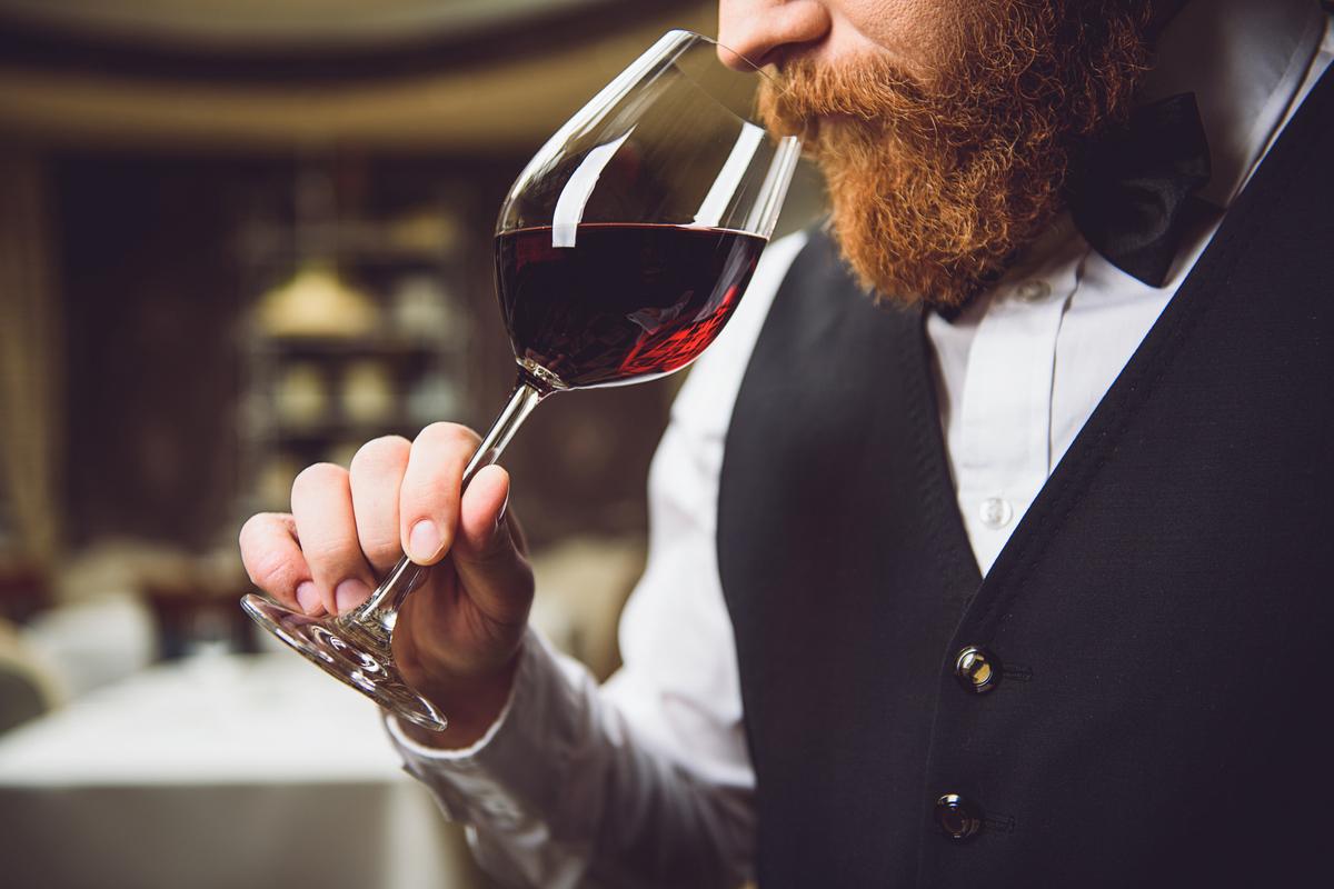formación en SGIdrinks distribuidores de bebidas alcoholicas vinos cervezas espirituosos en valencia y castellon